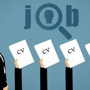 LE TOUT LYON | Dossier recrutements : quand l'emploi résiste et se réinvente