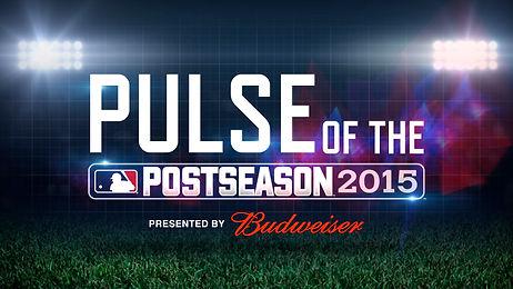 PulseOfPostSeason_bud (0;00;02;07).jpg