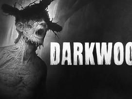 Darkwood Free Download (v1.3a)