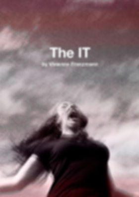The IT portrait and titles.jpg