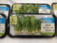 茨城県 有機野菜 マイクロシリーズ1