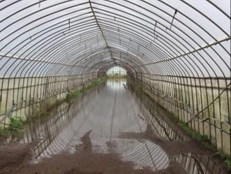 台風の大雨による影響