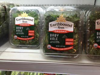 タイの有機野菜の状況を見てきました