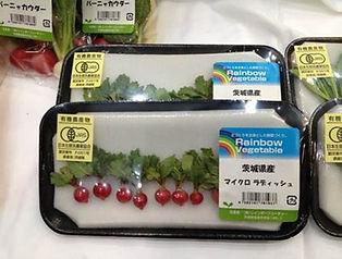 茨城県 有機野菜 マイクロシリーズ2
