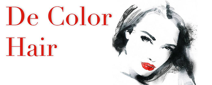 DeColor Hair website header.jpg
