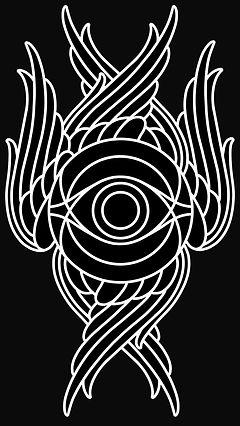 Peregrine_spiritweb.JPG