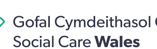 Research into careers in social care, early years and childcare, Social Care Wales