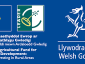 2019 Enhanced Annual Implementation Report of Wales Rural Development Programme 2014-2020
