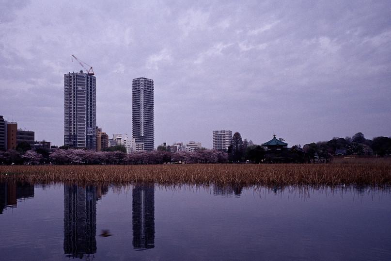 Japan-analog-Luise-Aedtner-05.jpg