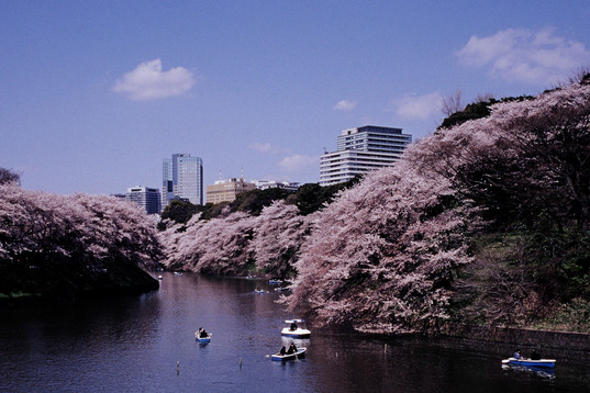 Japan-analog-Luise-Aedtner-07.jpg