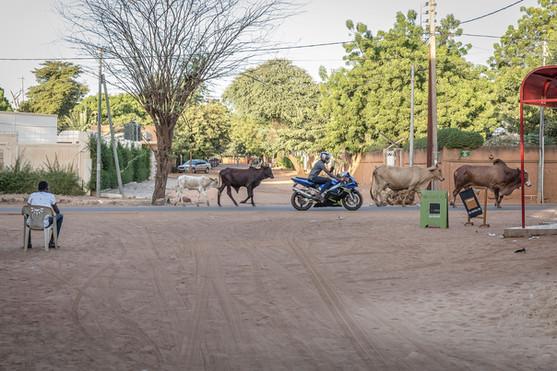 Niger-Luise-Aedtner-12.jpg