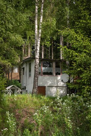 Im Thüringer Wald