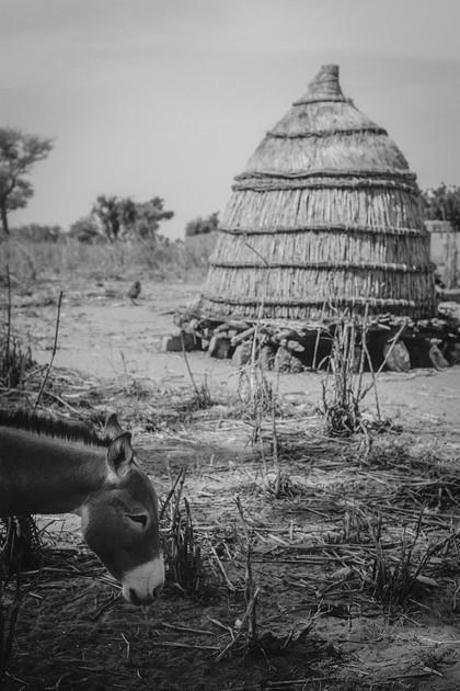 Niger-analog-Luise-Aedtner-21.jpg