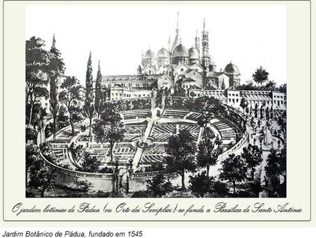 Jardim Botânico do Rio de Janeiro: 212 anos de muita história e conhecimento.