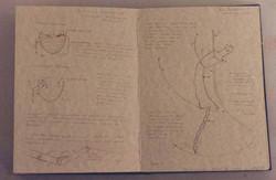 """Entomechology Technical Drawings"""