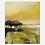 Thumbnail: Golden Moor series