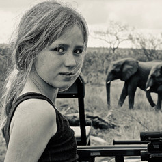 Elephants by Grant Notten