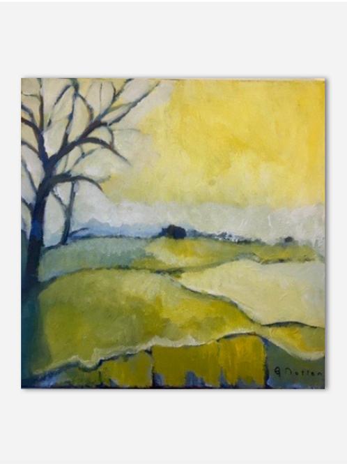Moor Dawn