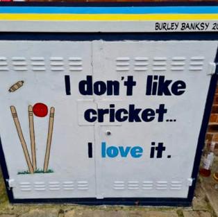 I don't like cricket
