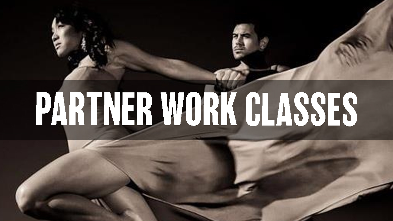 Partner Work thumbnail for website