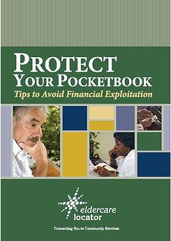 Fraud Book.jpg