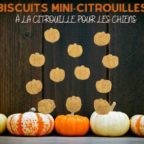 Biscuits mini-citrouilles à la citrouille