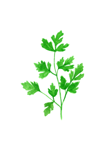 parsley.png