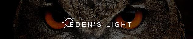 Logo preview image-eyes.jpg