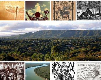Sertões brasileiros - mosaico