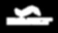 kinematics logo white