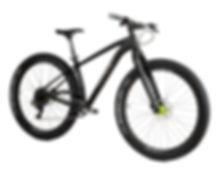 Boost hardtail Carbon Bike