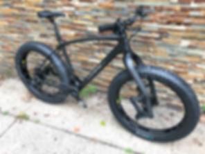 Travis Holt Fat Bike.JPG