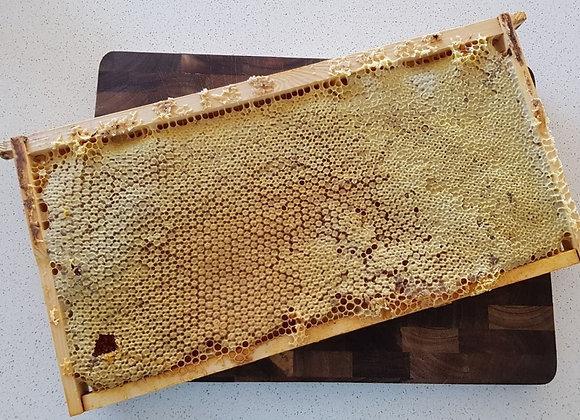 Honeycomb - Full Frame