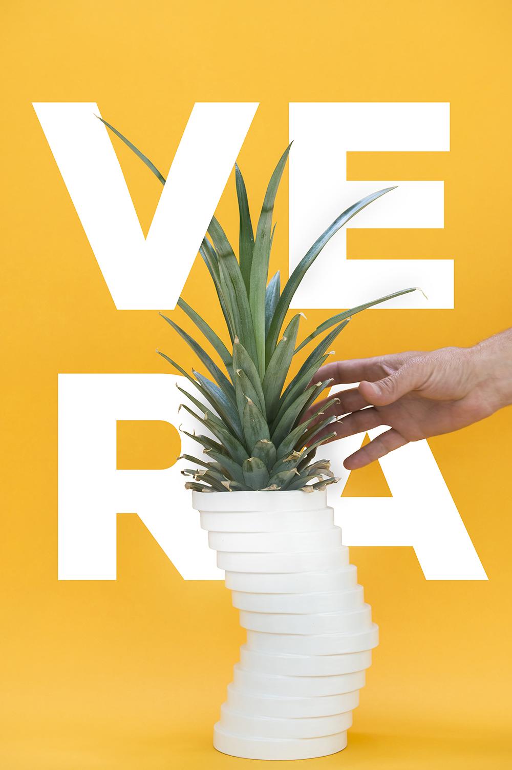 VERA-poster1