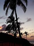 Caribbean Sunset- ©DMR-28.jpg