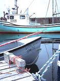 NovaScotia boats-em404 (1).jpg