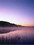 Lake dawn .jpg