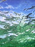 Reef Reflection-em (1).jpg