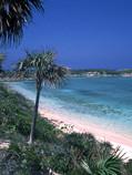EXUMA-Liz-isle-beach-corr-O01 jpg.jpg