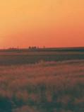 Sol Espanol .jpg