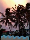 Caribbean Sunset- ©DMR.jpg