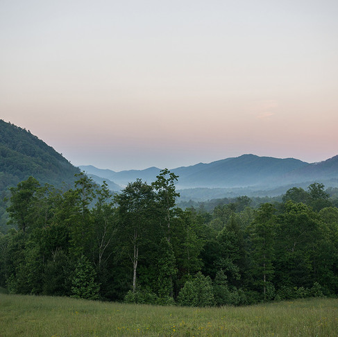 WALLAND, TENNESSEE: BLACKBERRY MOUNTAIN