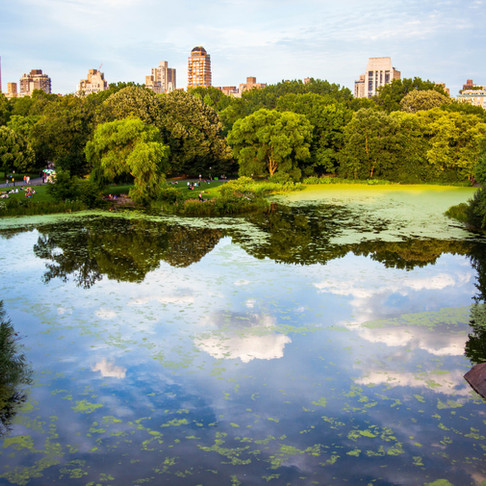 NYC: CENTRAL PARK