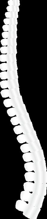 Hands On Health Chiropractic, Adjustments, New Jersey