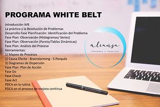 Contenido programa White Belt.jpg