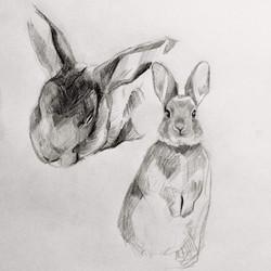 Ears study