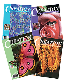 Creation Illustrated covers
