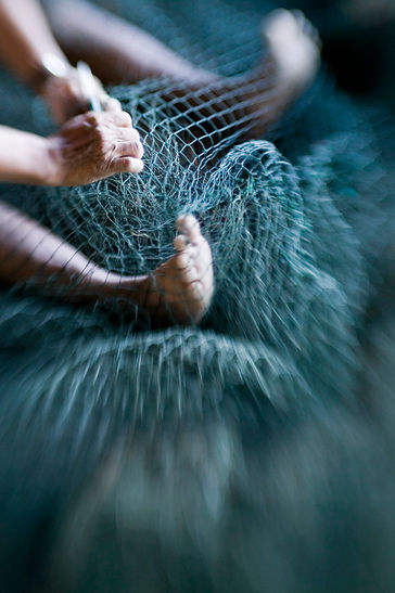 fishnets.jpg