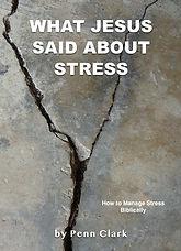 stress-1-Cover-50.jpg