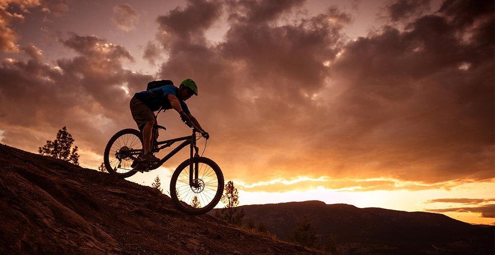 HG Bike.jpg